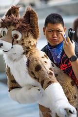 8M5A6536-6 (loboloc0) Tags: suit suiter fur fursuit furry con convention furcon further confusion fandom animal animals costume cosplay dance blackandwhite monochrome 2018 18