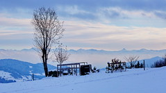 Winter in Allgäu (akovt) Tags: snow winter bayern germany alps allgäu mountains tree viewpoint view
