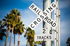 california rail crossing [Day 3319] (brianjmatis) Tags: california crossing palmtrees photoaday project365 railroad sign