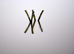 [-] (YIP2) Tags: water minimal minimalism abstract less zero zen simple detail remains texture surface reflection line lines