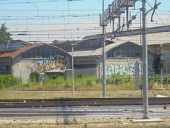 816 (en-ri) Tags: wca crew fakr reat giallo azzurro rosa verde acqua arroq reggio emilia wall muro graffiti writing