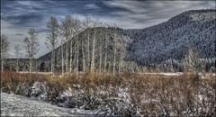 Jackson Hole, Wyoming / Jackson Lake Spillway Winter At It's Best November 2017 (PNWIslandguy) Tags: jacksonhole wyoming jacksonlake mountains lake grandtetons tetons winter landscape snowlandscape grandtetonnationalpark nationalparks parks