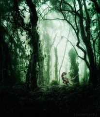 Forest of Fear - DSC09108+Dino-2 (1080h) (cleansurf2) Tags: forest rainforest dark creepy scarry screensaver scale dinosaur prehistoric dream dreamscape landscape trees canopy vines sony surreal australia color colour cool light ilce unusual green leaves fog mist glow hd fantasy dawn black background backdrop m mirrorless nature