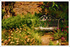Quiet Corner(UK) (williamwalton001) Tags: pentaxart wales woodlands garden textures flowers path nationaltrust trees bench wall green plants park