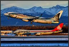 "N559AS Alaska Airlines ""Wild Alaska Seafood"" (Bob Garrard) Tags: n559as alaska airlines wild seafood boeing 737 anc panc winter sunset"