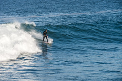 2018-Jan-California-682 (4x4Foto) Tags: 2018 bigsur california deetjensrestaurant emeraldbay january montereybay pacificcoasthighway pacificgrove pacificocean southlaketahoe flowers ocean plants rocks sunset sunshine surf surfing travel trees waves virginia unitedstates