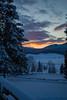 Grazie per questa creazione (Sergio Lano) Tags: luce bosco inverno