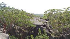 View (Tony Markham) Tags: walk spectacular flatrock royalnationalpark trek stunning rockformation rockformations rock sandstone cave overhang nationalpark nasho amazing climb teapotcave