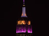 The Empire State Building is lit for the 142nd annual Westminster Kennel Club Dog Show. #WKCDogShow (apardavila) Tags: esb empirestatebuilding hoboken manhattan nyc newyorkcity westminsterkennelclubdogshow skyline skyscraper