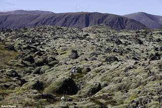 Campos de lava - Islandia