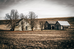 Entwined Tale (Pedalhead'71) Tags: abandoned barn farmhouse homestead lincolncounty rural washington