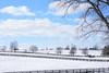Snow 2 (Jacey2009) Tags: nature snow farm winter ky fence