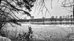 Acros the river 2 (peterpj) Tags: bugpolskazimarzekarivierwinter landscape bw silverefexpro a6300 sony