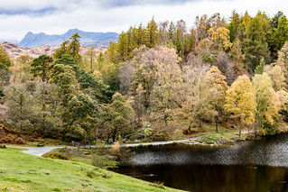 Tarn Hows with the Langdale Pikes in the background