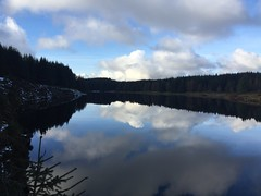 Photo of Loch Humprey Reflections