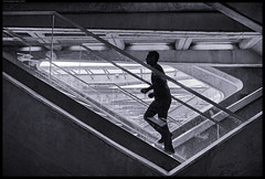 Lost In The Urban Jungle (frankmartinroth) Tags: 35mm f20 sony rx1r sonnart235 architecture building wide urban bw monochrome stairway geometry stairs lines people street movement portugal lisbon station