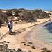 Beach trekkers.