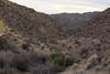 Desert_Road_Trip-4794 (smithjustind) Tags: arizona newyears2018 roadtrip robyn