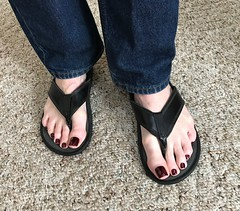 OPI - Suzi Loves Sydney (toepaintguy) Tags: male guy men man masculine boy nail nails fingernail fingernails toenail toenails toe foot feet pedi pedicure sandal sandals polish lacquer gloss glossy shine shiny sexy fun daring allure gorgeous opi suzi loves sydney maroon dark vampy long
