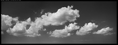 X1D5_B0003172 copy (mingthein) Tags: thein onn ming photohorologer mingtheincom availablelight xpan hasselblad medium format widescreen clouds sky bw blackandwhite monochrome x1d