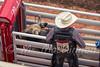 Calgary Stampede 2016 (tallhuskymike) Tags: calgary alberta stampede calgarystampede rodeo cowboy action event outdoors 2016 bullriding
