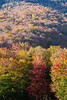 Evening fall colours at Stowe ski resort, Vermont (Miche & Jon Rousell) Tags: usa fall autumn vermont stowe mountmansfield smugglersnotch statepark leaves red yellow orange trees hiking trail skiing skiresort