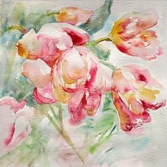 Les tulipes. 2° version (geneterre69) Tags: fleurs tulipes printemps rose aquarelle