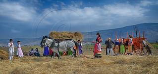 Αλώνισμα με (α)δοκάνι Traditional threshing (2)