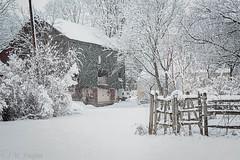 Snow Day (jwfuqua-photography) Tags: snowice nature pennsylvania hilltown jwfuquaphotography weather buckscounty jerrywfuqua