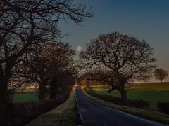 Driving to Work (davepickettphotographer) Tags: kimbolton cambridgeshire huntingdonshire huntingdon supermoon moon dawn uk east midlands eastern stonely