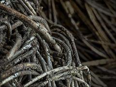 Fibre Food (Steve Taylor (Photography)) Tags: fibres art digital brown grey closeup macro uk gb england greatbritain unitedkingdom london texture lines bexley hallplace weaved woven willow