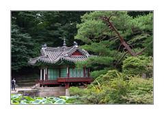 Le rêve du backpacker / Jardin secret - Séoul (PtiteArvine) Tags: forêt jardin arbres vert pavillon architecture histoire historique corée séoul