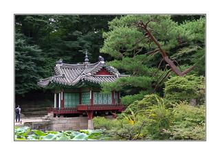 Le rêve du backpacker / Jardin secret - Séoul