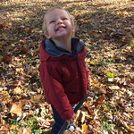 """Elijah playing in the leaves <a style=""""margin-left:10px; font-size:0.8em;"""" href=""""http://www.flickr.com/photos/124699639@N08/40391469071/"""" target=""""_blank"""">@flickr</a>"""