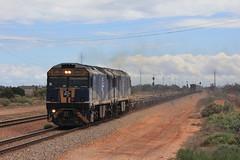 New Service (evenst3132) Tags: bowmans rail 4442s gl locomotives australia trains railways railroad port augusta solar power plant gl107 gl108 locomotive