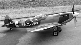 DONG The Spitfire.