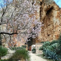 Mangiapane Village, Custonaci, Sicily IMG_20180128_141418 (tango-) Tags: sicilia sizilien sicilie sicily italia italien itallie italy