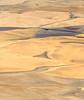 2017_08_24_2904-PS (DA Edwards) Tags: washington eastern palouse hills steptoe butte fields wheat harvest abstract minimalism color patterns da edwards photography summer 2017