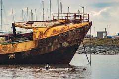 High Tide (ianbonnell) Tags: rampside barrowinfurness cumbria england uk coast hightide