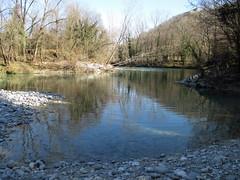 Riflessi lungo le rive del Natisone (Eli.b.) Tags: cielo fiume river sponde acqua water sky ciel paesaggio rami alberi inverno winter hiver