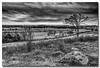 On Gettysburg battlefield.. (Roger Photos) Tags: nef gettysburg civilwar