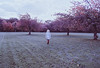 Secret Garden. (Violette Nell) Tags: arbre trees nature landscape secretgarden vintage model girl analog argentique portrait places mood travel france 35mmcolorfilm filmphotography violettenell feelings aesthetic purple green 35mm autumn automne paysage analogue 自然 秋 dream ethereal escape fineart