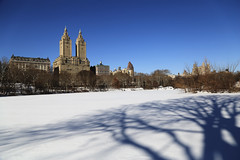 Happiness is ... walking in the park on a sunny morning (erichudson78) Tags: usa nyc newyorkcity manhattan centralpark snow neige smileonsaturday happinessis grandangle wideangle ciel sky building bâtiment ombre shadow canoneos6d canonef24105mmf4lisusm frost gelé white blanc froid cold paysageurbain urbanlandscape