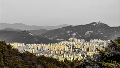 """I have stitched life into me like a rare organ."" ―Sylvia Plath ⛰ 🏢 ⛰ (anokarina) Tags: nikond90 autumn foliage skyline horizon mountains samil 삼일 만세운동 doseonsa 도선사 doseonsatemple munheungdong 문흥동 bukgu 북구 gwangju 광주광역시 seoul 서울 서울시 서울특별시 大韓民國 서울特別市 southkorea sk 대한민국 mountain buddhist temple adobephotoshopexpress colorsplash yellow green gold"