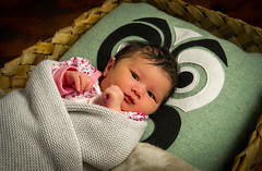 Granddaughter @ 2 Days (robin_ohia) Tags: portrait colour newzealand aotearoa festival baby d3s people