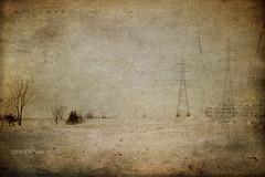 L'HIVER TOUJOURS L'HIVER (pierre.arnoldi) Tags: hiver canon canada québec photographequébécois sthilaire pyloneselectriques photoderue photooriginale photocouleur on1photoraw2018