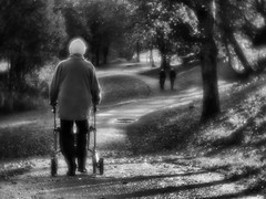 By Myself (Anne Worner) Tags: anneworner olympus em5 lensbaby velvet56 manualfocus manualfocuslens f16 street streetphotography bw blackandwhite nik silverefex woman people walking path lateday longshadows contrasts trees outside outdoors walker elderly