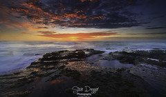 0S1A1075 (Steve Daggar) Tags: wamberal nswcentralcoast sunrise seascape landscape longexposure gosford