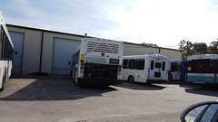 2012 El Dorado EZ Rider II #26550 (abear320) Tags: transit bus el dorado ez rider max lake xpress florida