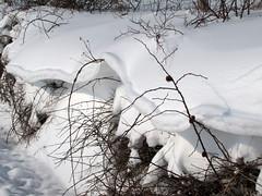 Zimska odeja / Winter blanket (Damijan P.) Tags: zima winter sneg snow slovenija slovenia prosenak
